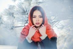 Härlig vinterstående av den unga kvinnan i Arkivfoto
