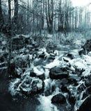 Härlig vintervattenfall blanka istappar Arkivfoto