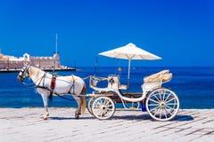 Härlig vit häst med vagnen i Chania Arkivbild
