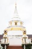 Härlig vit pagod i templet Royaltyfria Bilder