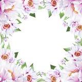 Härlig vit piongränsram Bukett av blommor Blom- tryck Mark?rteckning stock illustrationer