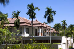 Härlig vit villa med palmträd och en trädgård Royaltyfria Foton