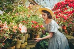 Härlig vuxen flicka i ett azaleaväxthus som drömmer i en härlig retro klänning och hatt royaltyfri fotografi