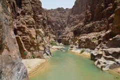 Härlig Wadi Mujib kanjon i Jordanien royaltyfri bild