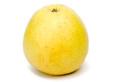 härlig white för äpplebakgrund Royaltyfri Fotografi