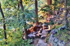 Härlig Wisconsin naturbakgrund arkivfoto