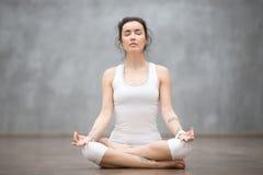 Härlig yoga: Halva Lotus poserar Arkivfoto