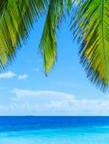 2007 härliga öliggandemindanao philippines föreställer taget tropiskt Fotografering för Bildbyråer