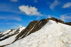 Härliga alaskabo berg och landskap i sommartid Fotografering för Bildbyråer