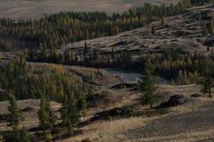 Härliga altaiberg i vintern Sibirien Royaltyfria Bilder