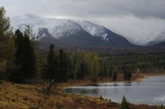 Härliga altaiberg i vintern Sibirien Arkivfoto
