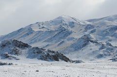 Härliga altaiberg i vintern Sibirien Arkivfoton