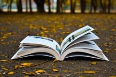 Härliga böcker på gul höstsäsong royaltyfri fotografi