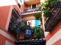 Härliga balkonger med blommor och växter royaltyfria bilder
