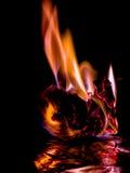 Härliga begreppsflammor Brand på brännskadapapper med svart bakgrund Royaltyfria Bilder