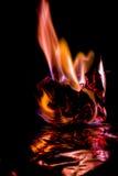 Härliga begreppsflammor Brand på brännskadapapper med svart bakgrund Royaltyfri Bild