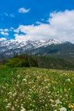 härliga berg Arkivbild