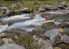 Härliga berg fastar floden Royaltyfria Bilder