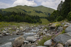 Härliga berg fastar floden Royaltyfri Foto