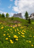 Härliga berg i Dolomites royaltyfria foton