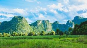Härliga berg med landskap för grön växt och för blå himmel Arkivbilder