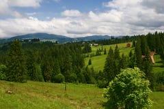 Härliga berg och blå himmel i Carpathiansna ukraine royaltyfria foton