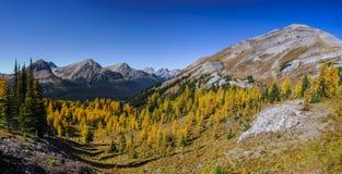 Härliga berglandskap i höst Arkivfoton