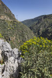 Härliga berglandskap på Preveli i Kreta, Grekland Royaltyfria Foton