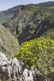 Härliga berglandskap på Preveli i Kreta, Grekland Arkivbild