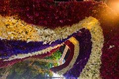 Härliga blommabågar i `-blomman för fader`-aktivitet för att att vara medvetent av hans majestätkonung Bhumibol Adulyadej, Pak Kl Arkivbild