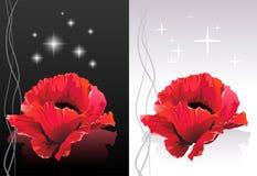 härliga blommor vektor illustrationer