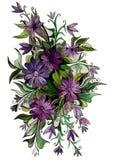 Härliga blommor av olika färger Royaltyfri Foto