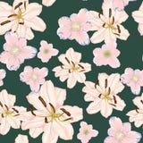 Härliga blommor för vita liljor Sömlös modell på svart bakgrund också vektor för coreldrawillustration Arkivbilder