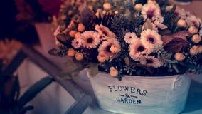 Härliga blommor i en blomkruka på en tappningbakgrund Med tappningfiltret royaltyfri fotografi