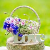 Härliga blommor i korgen och ordförälskelsen Royaltyfria Foton