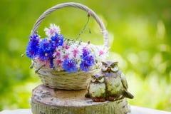 Härliga blommor i korgen och ugglastatyetten Royaltyfria Bilder