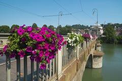 Härliga blommor på bron över Po River i Turin Royaltyfri Fotografi