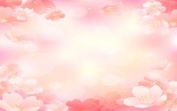 Härliga blommor som göras med färgfilter Rosa bakgrund Fotografering för Bildbyråer