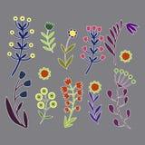Härliga blommor uppsättning, vektor isolerade objekt Royaltyfri Bild