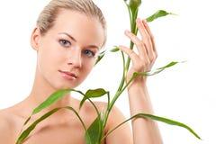 härliga blonda touches för bambu royaltyfri foto