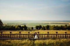 Härliga brölloppar, stilfull brud och stilig brudgum, hugg Arkivfoto