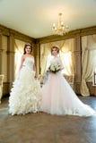 Härliga brudar med bröllopmakeup Royaltyfri Fotografi