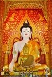 Härliga Buddha avbildar i tempel Arkivbild