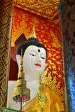 Härliga Buddha avbildar i tempel Royaltyfri Fotografi