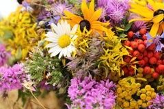 härliga buketter från blommor och örter Royaltyfri Foto