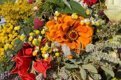 härliga buketter från blommor och örter Royaltyfria Bilder