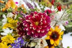 härliga buketter från blommor och örter Arkivfoto