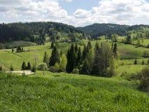 Härliga Carpathian berg royaltyfria foton