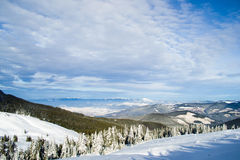 Härliga Carpathian berg i Ukraina Royaltyfria Bilder