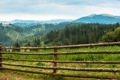 Härliga Carpathians Royaltyfria Bilder
